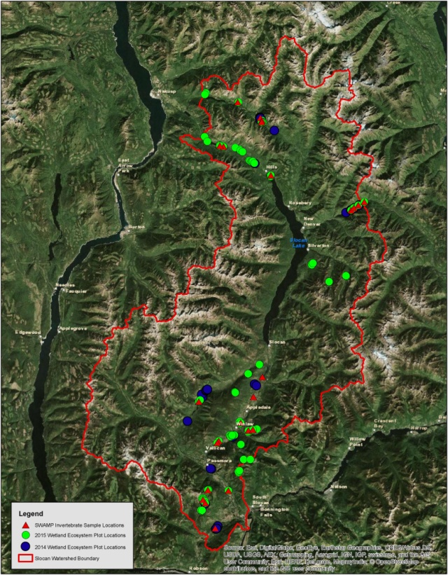 Assessed Wetland Map
